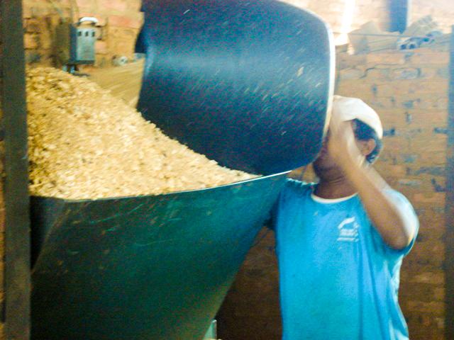 Luara-employee-and-biomass