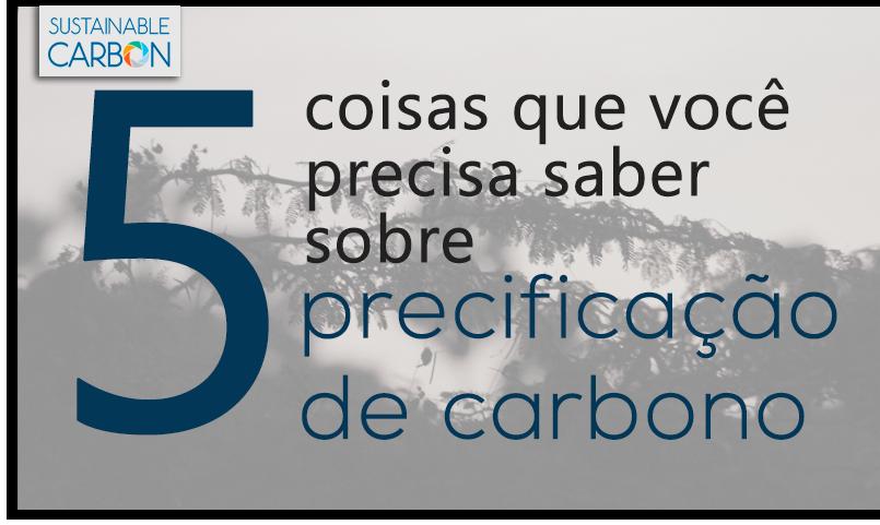 CAPA POSTAGEM2