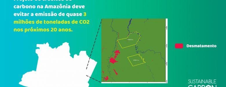 créditos de carbono na Amazônia